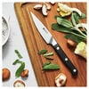 4 inch Paring knife - Visual Imperfections,,large