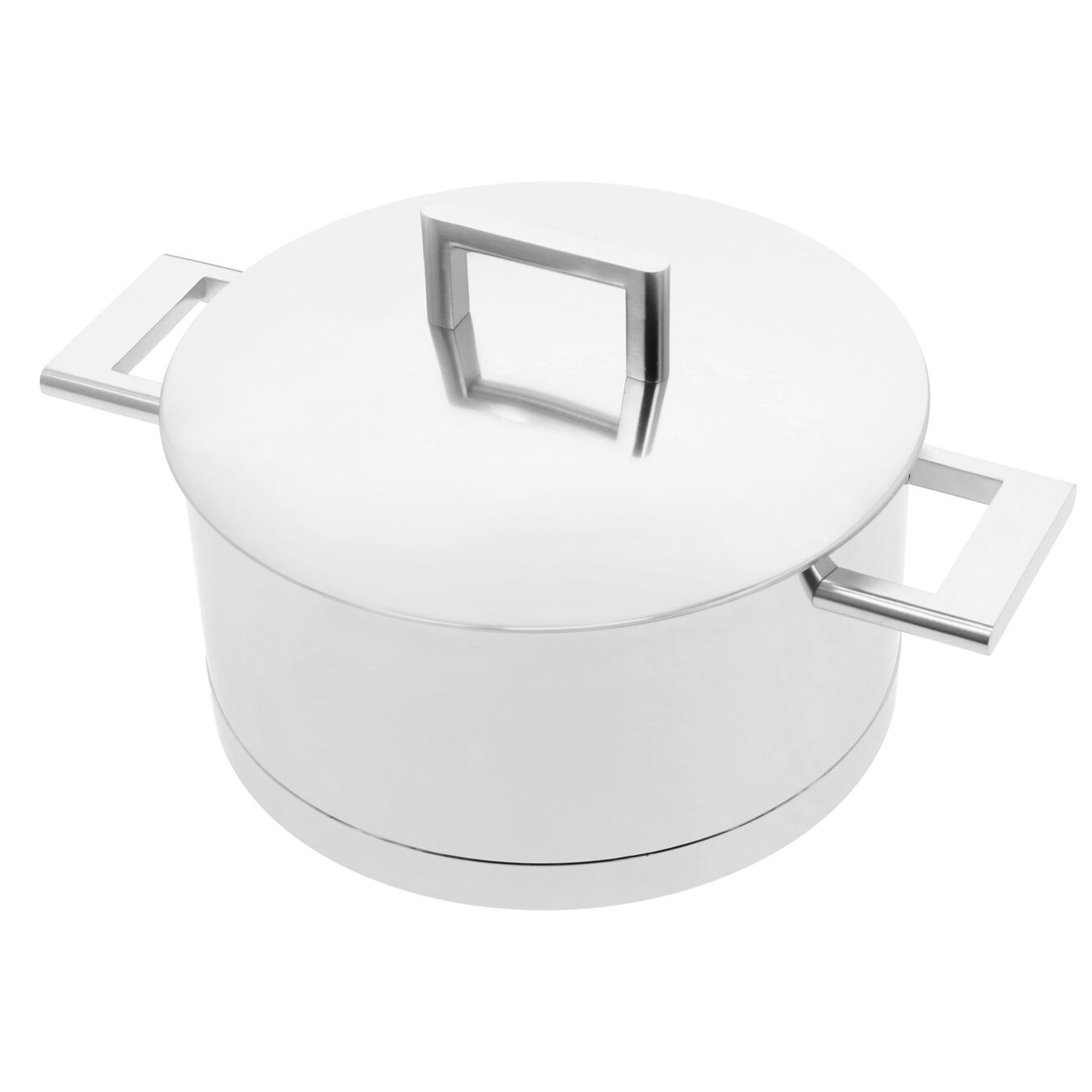4.25 qt, 18/10 Stainless Steel, Stew pot with double walled lid,,large 5