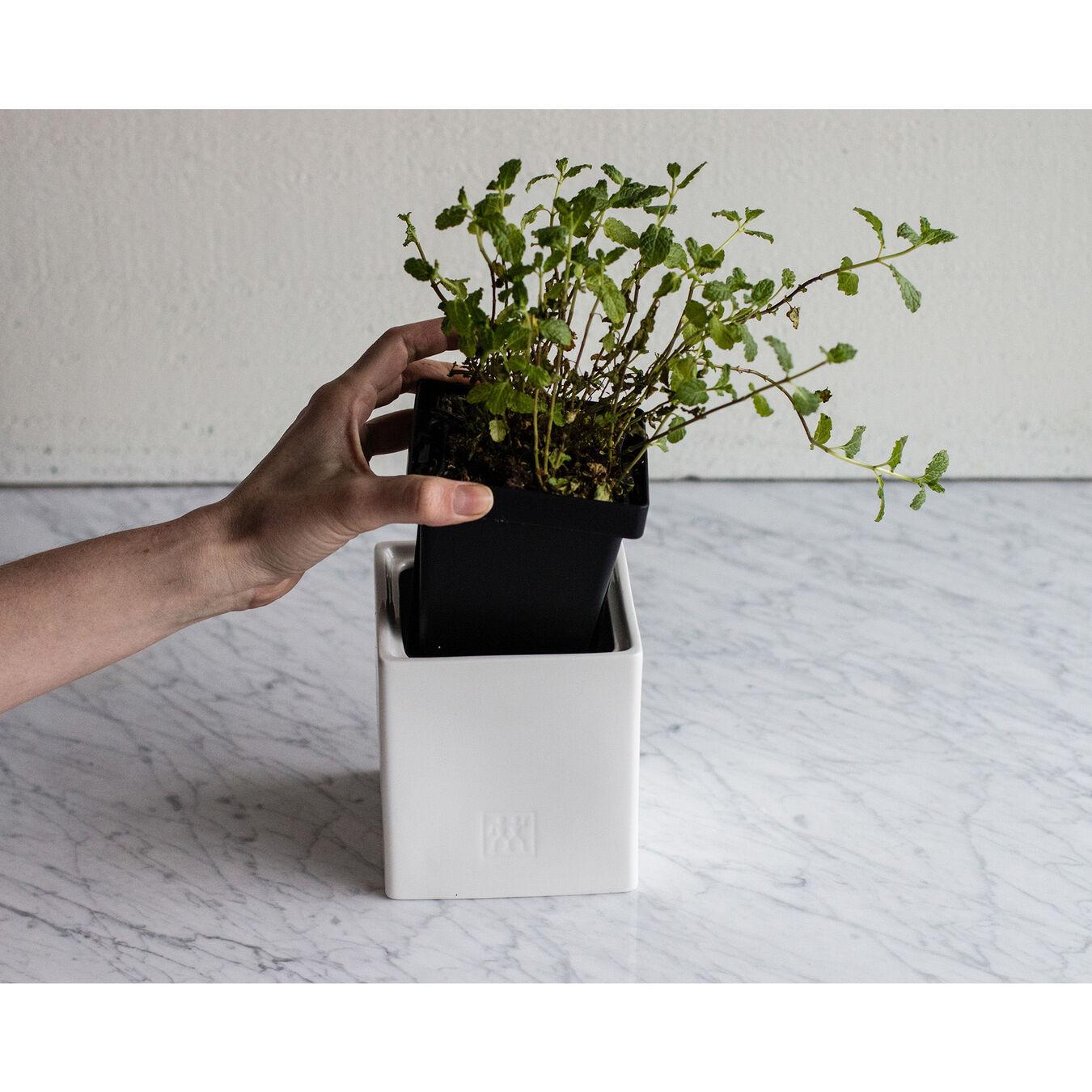 28.75 oz, ceramic, Medium Box with herb Pot and lid ,,large 2