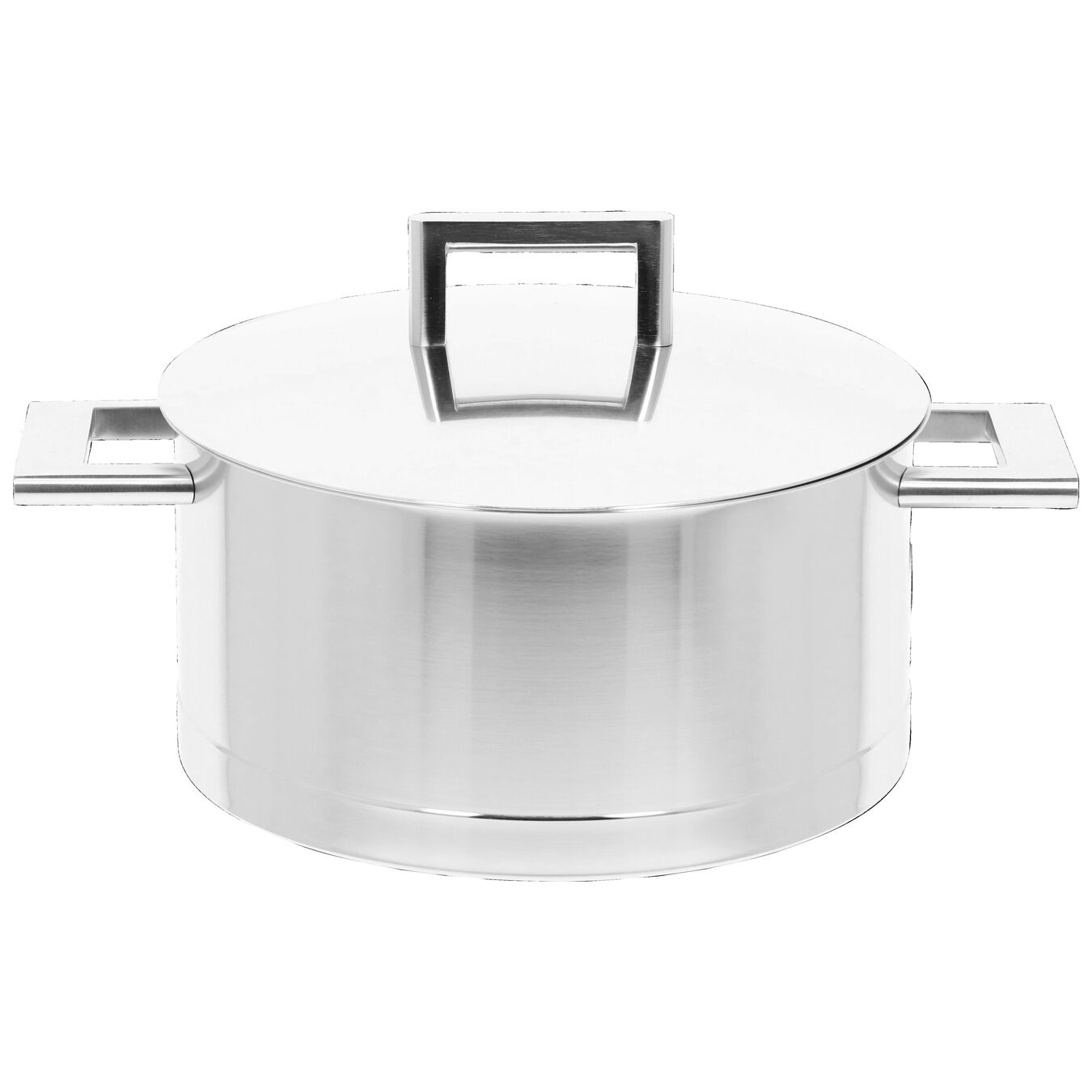 5.5 qt, 18/10 Stainless Steel, Stew pot,,large 1