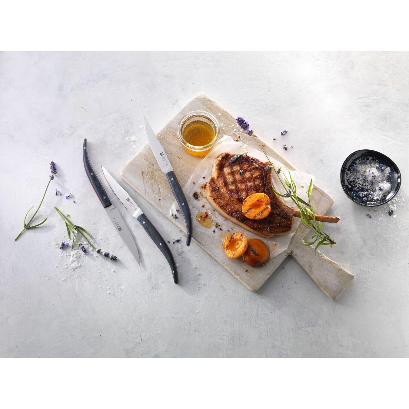 Biftek Bıçağı Seti | Mavi Mikarta | 4-parça,,large 3