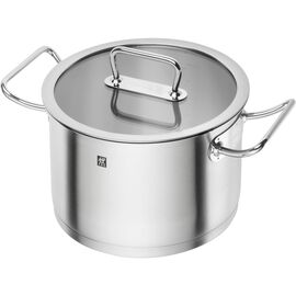ZWILLING Pro, 6.25 l 18/10 Stainless Steel Stock pot