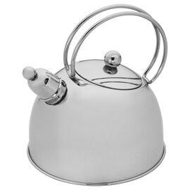 2.6-qt Stainless Steel Whistling Tea Kettle