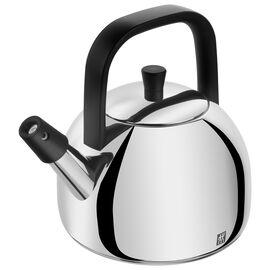 ZWILLING Plus, Vattenkittel 18 cm, 18/10 Rostfritt stål, Silver